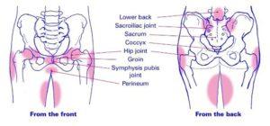 Pelvic Girdle Pain Areas